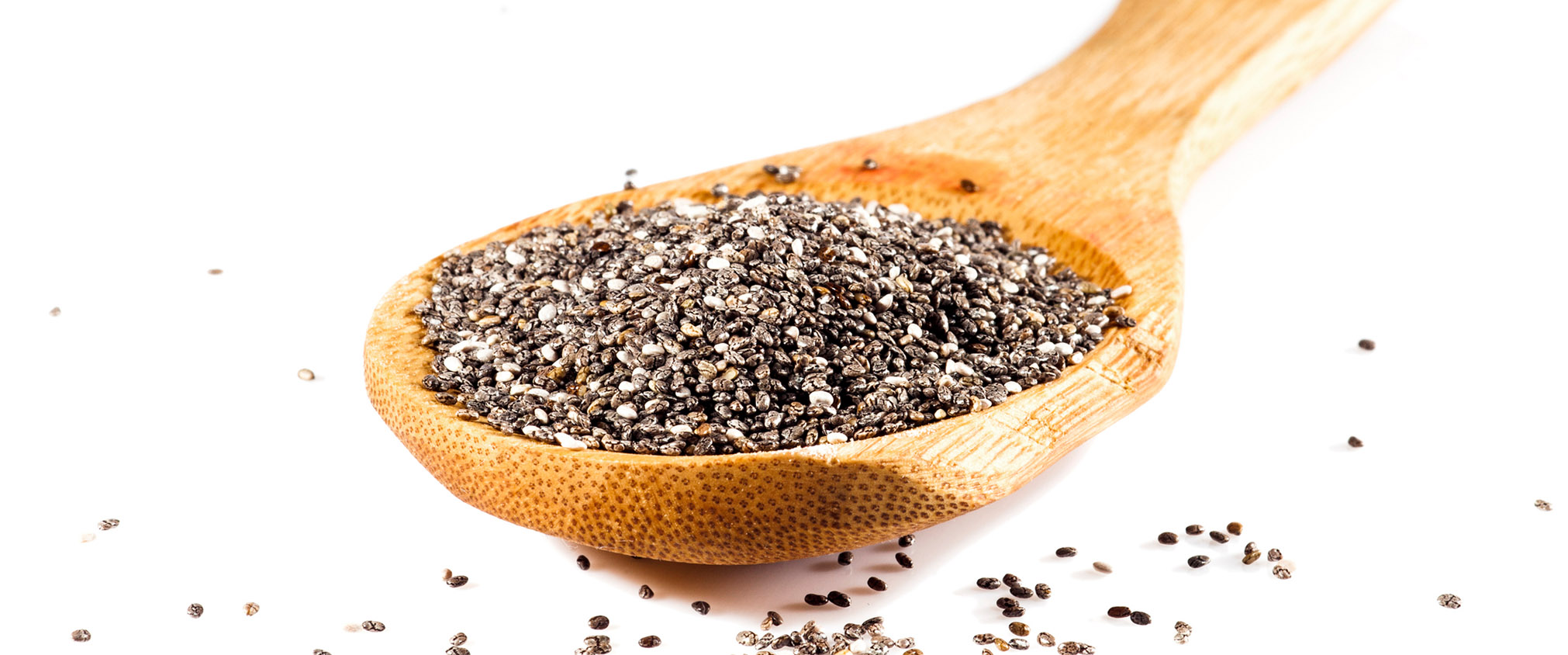 how to grow chia seeds
