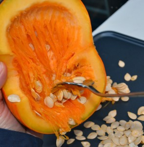 Pumpkin Seed Extraction